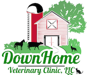 DownHome Logo